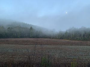 Moon over a field at sunrise on the Swinging Bridge route