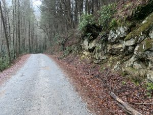 Forest Service Road 58 on the Swinging Bridge route