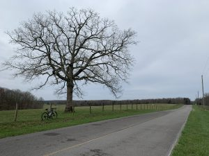 Old State Rd