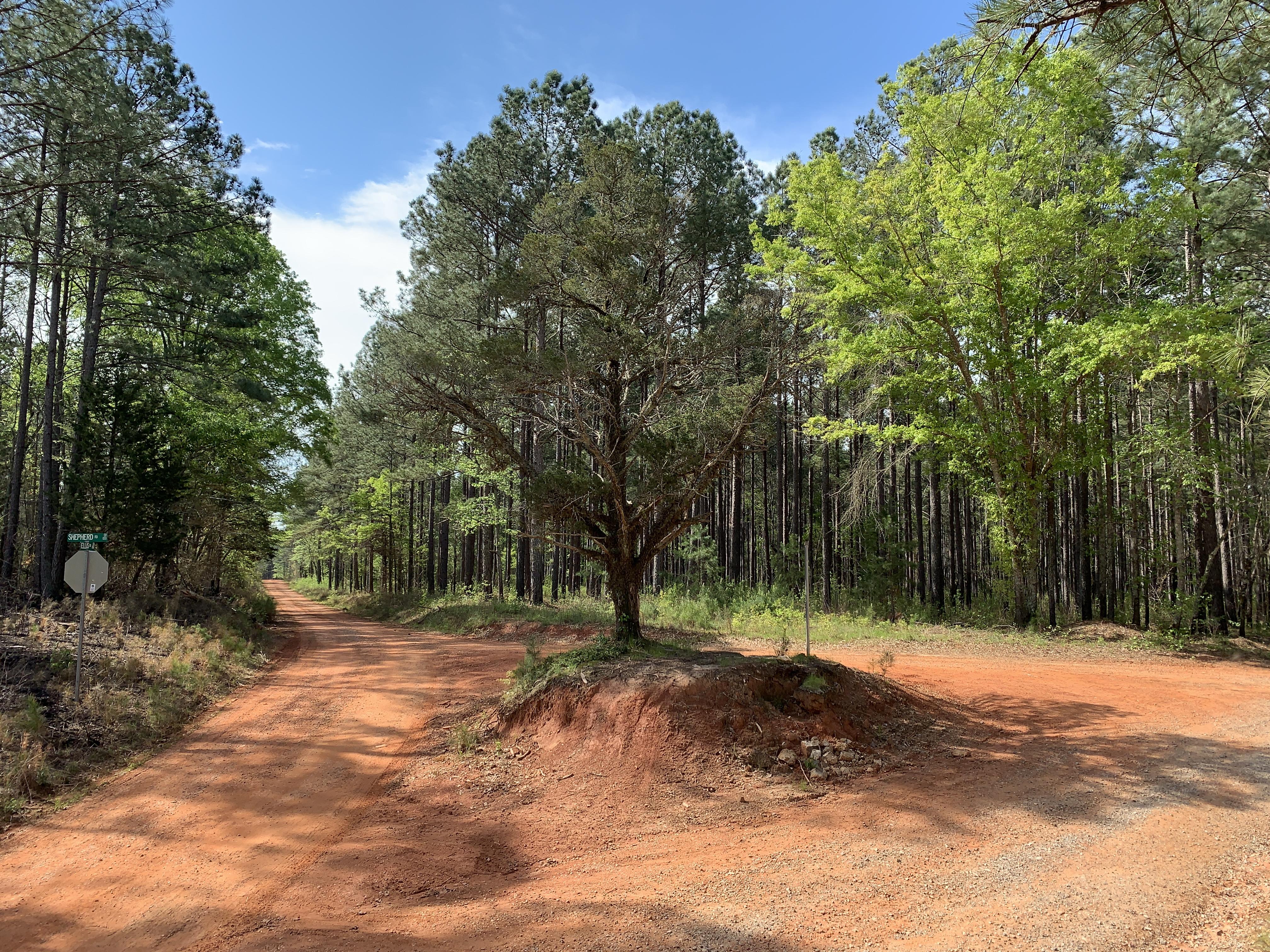 Murder Creek Route