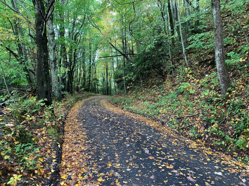 Heintooga Ridge